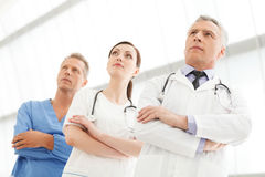 Successful medical team. Successful doctors team standing togeth Stock Images