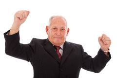 Successful senior businessman Royalty Free Stock Image
