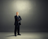 Successful senior businessman Royalty Free Stock Images