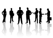 Successful Team. Seven business professionals standing for success Stock Image