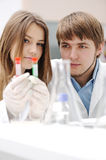 Successful teamwork inside the lab Royalty Free Stock Image