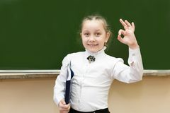 Successful teen schoolgirl smiling holding up her hand. Passed the exam for a good grade. Girl student shows a hand sign that she is fine stock photos