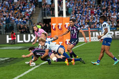 Free Successful Try In Rugby Royalty Free Stock Photography - 26901607