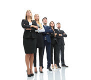 Successfull busines team isolated on white background. Team of successful and confident people posing on a white background Royalty Free Stock Photos