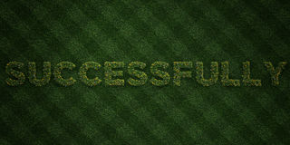 SUCCESSFULLY - fresh Grass letters with flowers and dandelions - 3D rendered royalty free stock image. Can be used for online banner ads and direct mailers Royalty Free Stock Photo