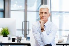 Successo e professionalità in persona Immagini Stock