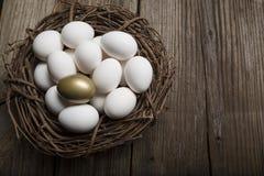 Successo finanziario che trova l'uovo e la condizione dorati fuori dal primo piano della folla fotografia stock