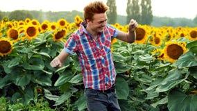 Succesvolle mannelijk-landbouwer het dansen pret op zonnebloemengebied, tevreden en positief op zonsondergang De landbouwconcept stock video