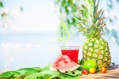 Succhi sani freschi luminosi, frutta, ananas, anguria sui precedenti del mare Estate, resto, stile di vita sano Immagine Stock