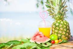 Succhi sani freschi luminosi, frutta, ananas, anguria sui precedenti del mare Estate, resto, stile di vita sano Immagini Stock Libere da Diritti