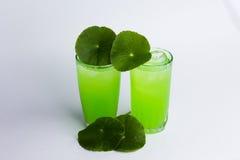 Succo asiatico dell'erba di Pennywort isolato sul agai bianco e sano dell'alimento Immagini Stock