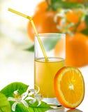 succo d'arancia e primo piano arancio fotografia stock libera da diritti