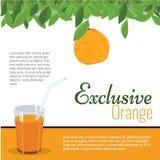Succo d'arancia esclusivo fresco con la foglia per il manifesto, etichetta, menu Fotografia Stock Libera da Diritti