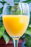 Succo d'arancia freddo fresco Fotografia Stock Libera da Diritti