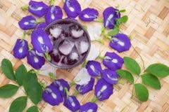 Succo del pisello di farfalla per la bevanda Immagini Stock Libere da Diritti