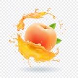 Succo della pesca Spruzzata realistica della frutta fresca dell'illustrazione di vettore del succo Immagini Stock Libere da Diritti