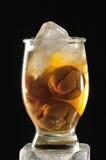 Succo della prugna del ghiaccio Fotografie Stock