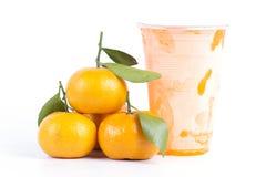 Succo di arancia congelato Fotografie Stock Libere da Diritti