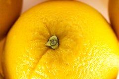 Succo di arancia rosso fotografia stock