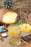 Succo di frutta dell'ananas ed ananas fresco succosi Fotografia Stock Libera da Diritti