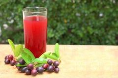 Succo di frutta di Karonda Fotografia Stock