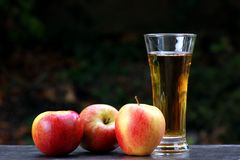 Succo di mele fotografia stock libera da diritti