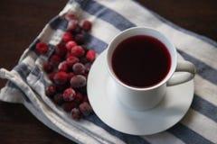 Succo di mirtillo rosso organico fresco Fotografia Stock Libera da Diritti