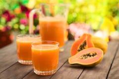 Succo di papaia Immagini Stock Libere da Diritti