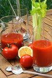 Succo di pomodoro Fotografia Stock Libera da Diritti