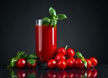 Succo di pomodoro con basilico fotografia stock libera da diritti