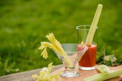 Succo di pomodoro e del sedano in un vetro di vetro Fotografie Stock Libere da Diritti