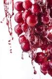 Succo di uva rossa fresco fotografia stock