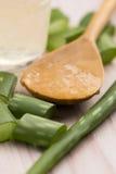 Succo di vera dell'aloe con le foglie Immagini Stock