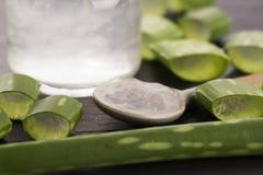 Succo di vera dell'aloe con le foglie Fotografia Stock