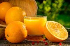 Succo e frutta di arancia Fotografia Stock Libera da Diritti