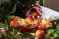 Succo e mele di mele Fotografia Stock