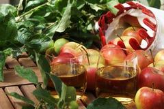 Succo e mele di mele Fotografie Stock Libere da Diritti