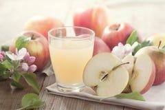 Succo e mele di mele Fotografia Stock Libera da Diritti