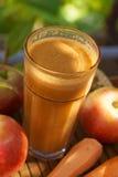 Succo fresco di mele e della carota Fotografie Stock Libere da Diritti