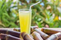 Succo fresco per una dieta della disintossicazione - frutti organici della canna da zucchero su woode Immagini Stock Libere da Diritti