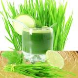 Succo germogliato fresco dell'erba del grano con l'erba del grano nel fondo bianco Fotografie Stock