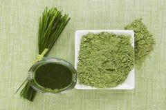 Succo verde. fotografia stock