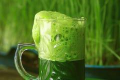 Succo verde fresco dell'erba del grano della tazza - bevanda Immagini Stock