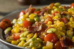 Succotash fait maison avec Lima Beans Image libre de droits