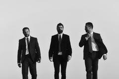 Succsses дела Менеджеры идут вперед и говорят Руководители с бородой Стоковые Фотографии RF