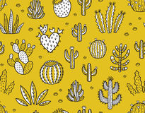 Succulent boho seamless pattern Stock Photography