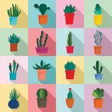 Succulent and cactus flowers icons set, flat style. Succulent and cactus flowers plant floral icons set. Flat illustration of 16 succulent and cactus flowers vector illustration