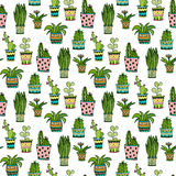 Succulent and cactus seamless pattern. Colorful doodle flowers in pots. Vector background. Stock Photos