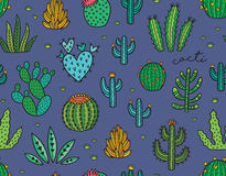 Succulent colorful seamless pattern. Hand drawn vector background Royalty Free Stock Image