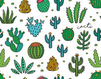Succulent colorful seamless pattern. Hand drawn vector background Stock Images